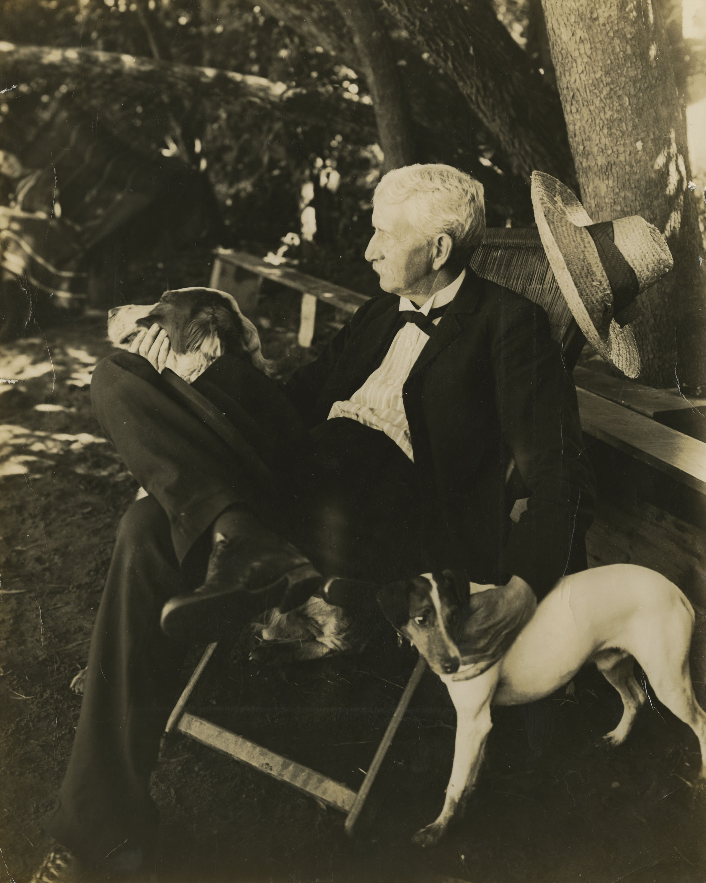 image of Presidnet McBryde outdoors with two dogs