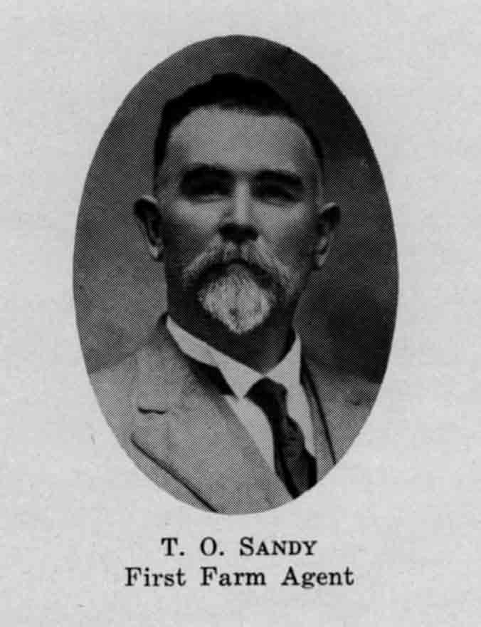 Sandy copy