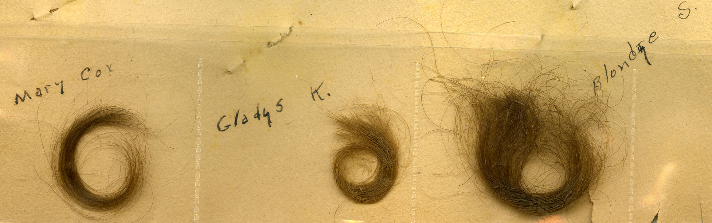 The scrapbook of Frank C. Kitts Jr., who perhaps considered himself something of a Lothario, contains locks of hair from three different women.