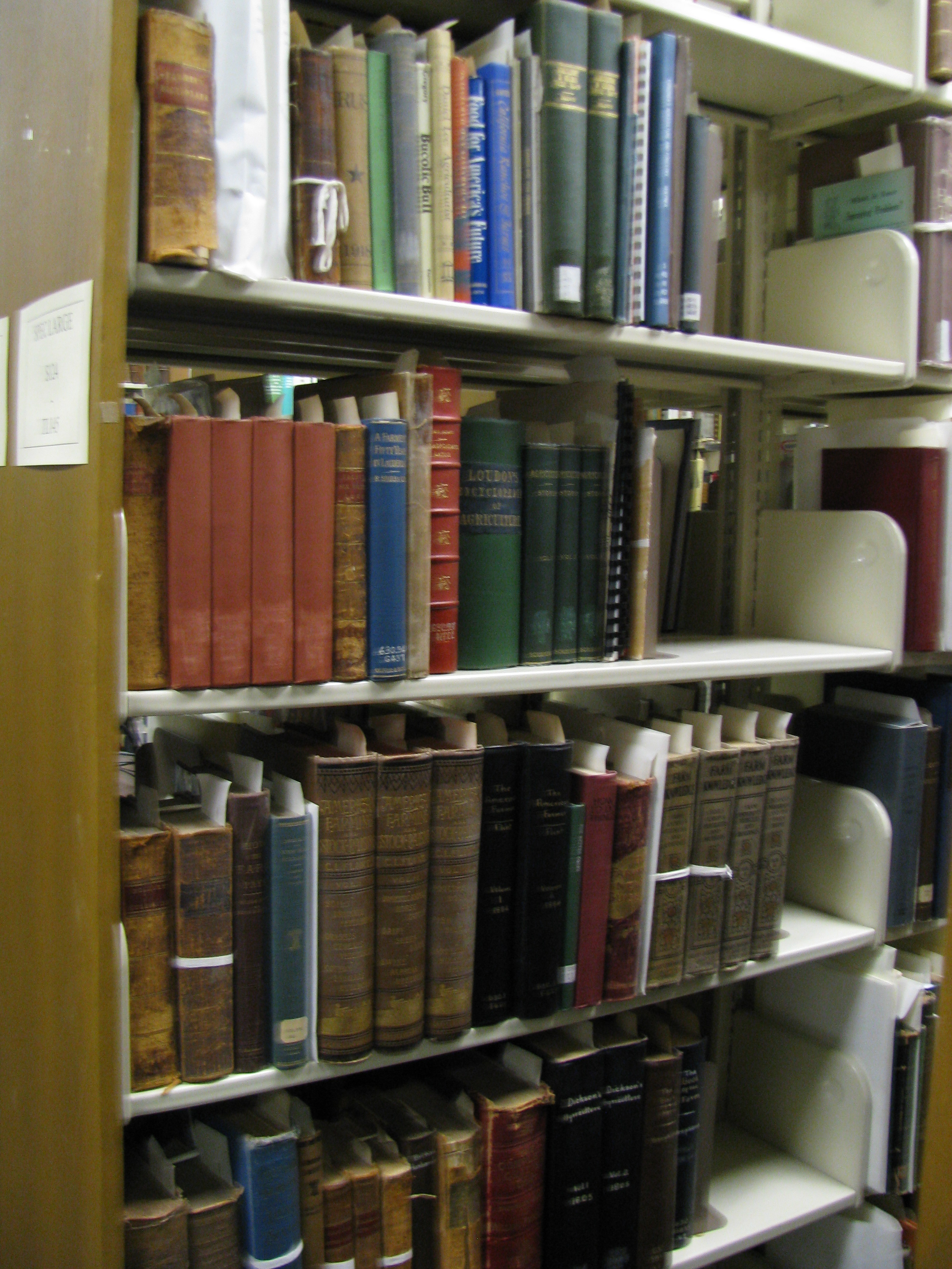 Our rare books are shelved in call number order, but not all together. We have some shelved by size (so we can maximize available shelves) and others shelved by topic (like university publications and Civil War books).