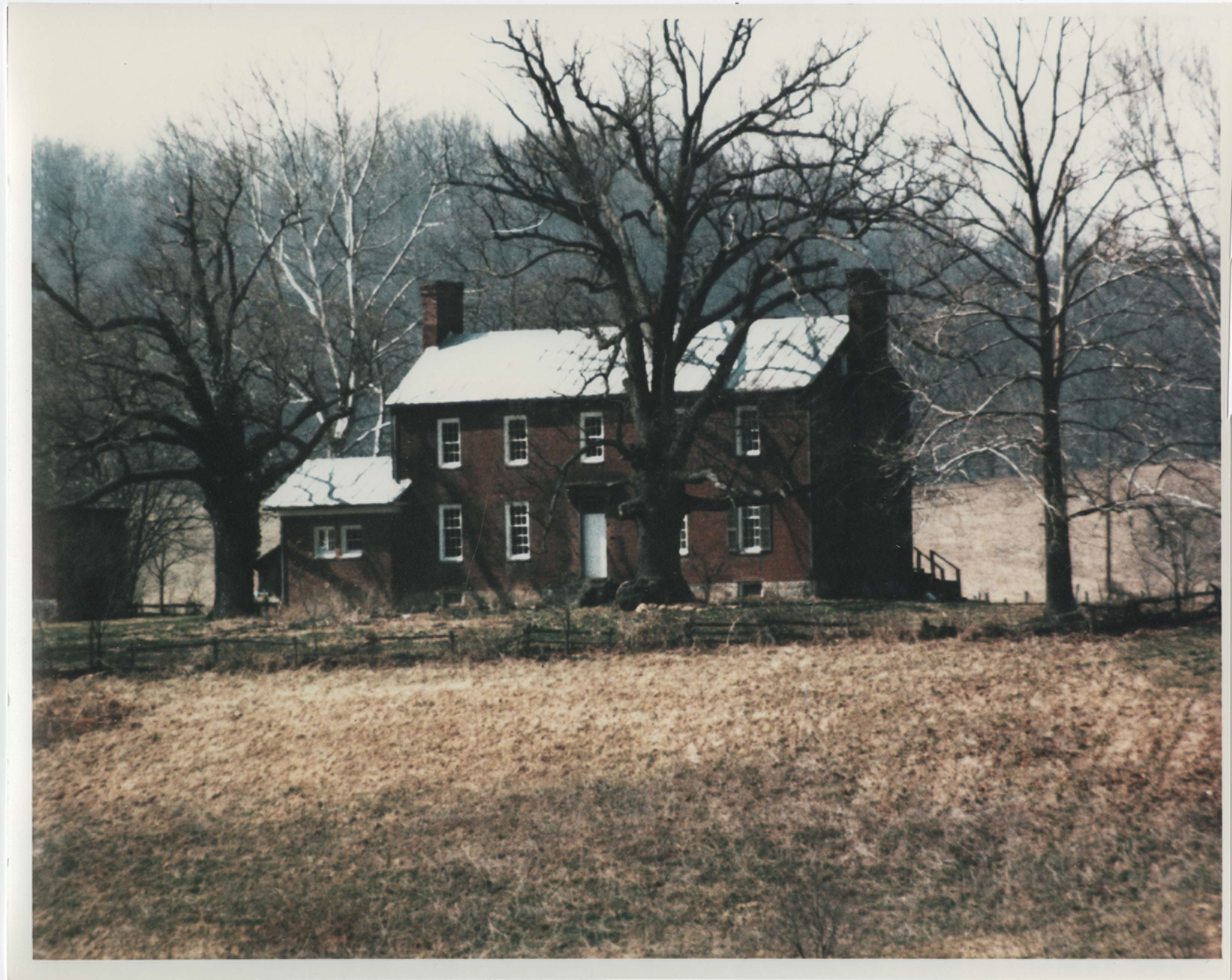 image of the front of the house with a large tree near the doorway
