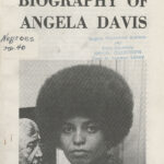 Political Biography of Angela Davis, NY Committee to Free Angela Davis, January 1971