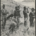 The U.S. Negro in Vietnam: A Series by Thomas A. Johnson, New York Times, 1968
