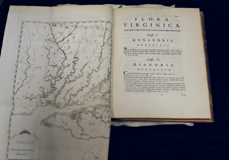 A photograph of a copy of the 1762 Flora Virginica open to the section on Monandria and Diandria. On the left side is a fold-out map of the Virginia colonial region that is larger than the bound book.